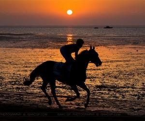 Horse Racing on the beach, Sanlúcar de Barrameda ( Cádiz – Andalusia) Spain